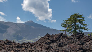 von der lava verschont