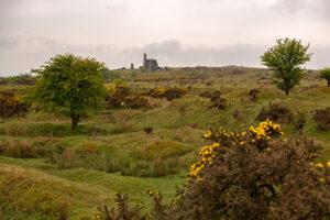 Bodmin Moor mit Ruine