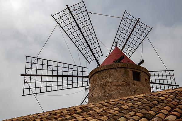 Die Windmühlen waren Inspiration für Don Quichote