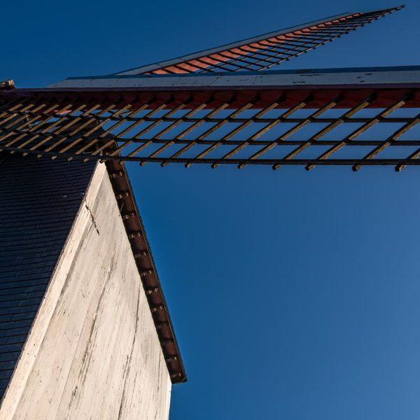 Am Kanal Ringvaart stehen mehrere Mühlen, eines der Wahrzeichen Brügges