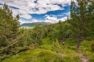 abwechslungsreicher nationalpark