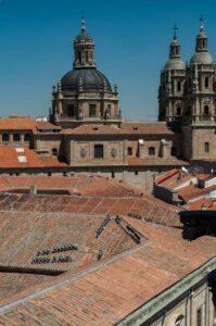Es lohn sich immer auf den Turm und das Dach der Kathedralen zu gehen